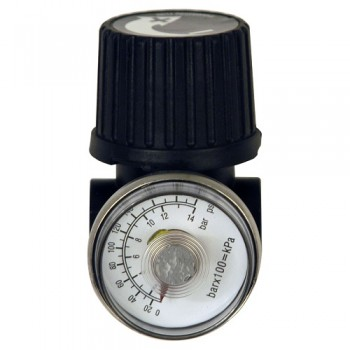1/4-Inch Regulator and Gauge (GR001700AJ)
